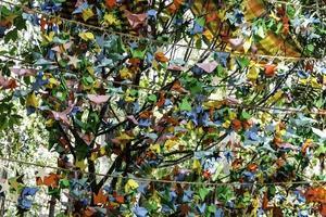 pájaros de papel de colores colgando