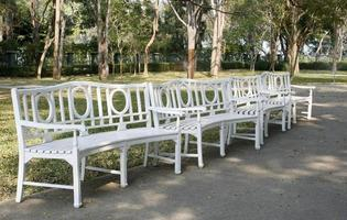 Row of white park benches