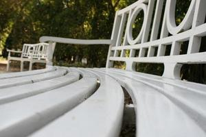 Close-up of a park bench photo