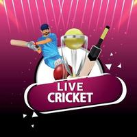Cricket match concept with stadium vector