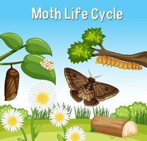 escena con ciclo de vida de la polilla