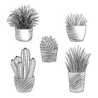 Set of hand drawn plants sketch vector
