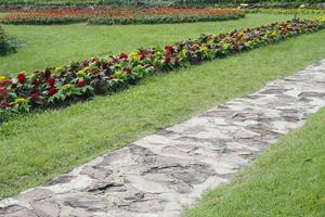 Stone walkway near flowers photo