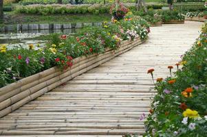 primer plano, de, un, puente de bambú foto