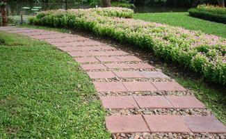 Pathway near flowers
