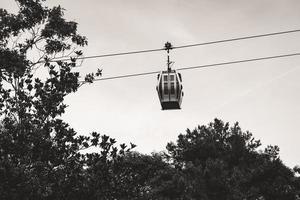 teleférico suspendido sobre los árboles foto
