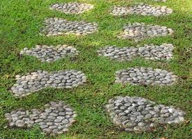 Stone walkway in green grass