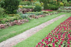Path in a flower garden