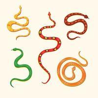 Conjunto de ilustración de vector de depredador de veneno de serpiente