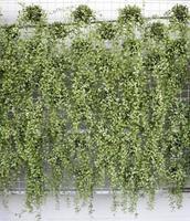 plantas verdes verticales