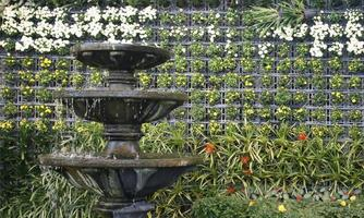 Water fountain and vertical flower wall
