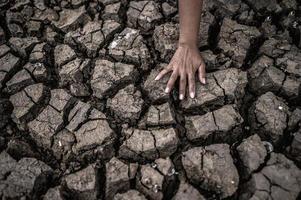 manos en suelo seco y agrietado foto