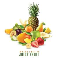 realistic juicy fruit vector
