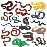 snake animal reptiles set vector