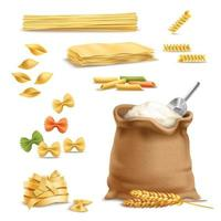 flour, pasta and wheat spikelets realistic