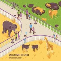 isometric zoo illustration vector