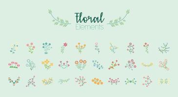 bundle of thirty flowers garden flat elements vector