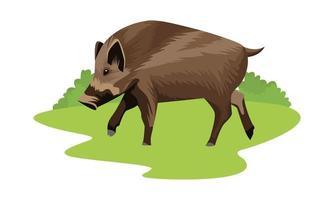 icono de animal de cerdo salvaje
