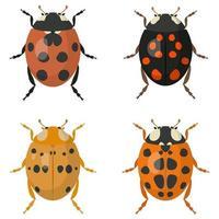 Set of ladybugs. vector