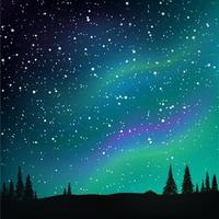 Northern lights in the starry sky and pine forest. vector