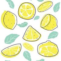 bright sliced lemon and leaves with line pattern seamless background, summer background vector