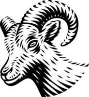 Ilustración vectorial en blanco y negro de una cabra en estilo de grabado sobre fondo blanco.
