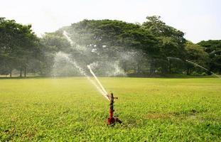 Water sprinkler in a park