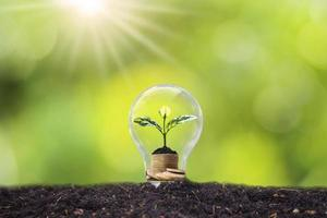 A tree grows in light bulbs, energy-saving and environmental concepts on Earth Day photo