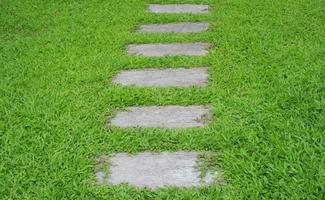 Stone walking path