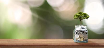 Financial business background. Planting a tree on a coin bottle and wood floor. Financial and investment growth ideas