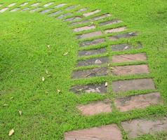 Stone way in green grass