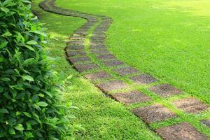 Walkway in green grass photo