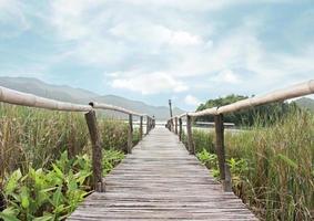 Bamboo bridge walkway photo