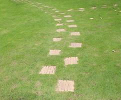 Stepping stones in green grass