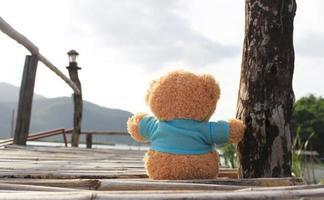 Teddy bear sitting on a bamboo bridge photo