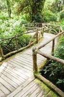antiguo camino de madera foto