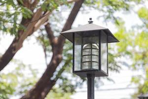 Black Lantern in the park