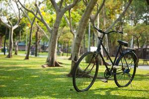 bicicleta en el parque foto