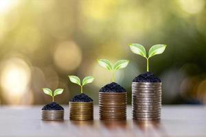 Coins and plants on a coin pile, ideas for saving money, and investing business