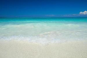 Tropical beach at daytime