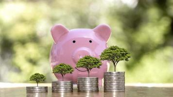 Planting a tree on the coin is a financial concept, investing and raising savings for the future photo