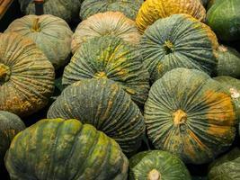 Group of green pumpkins