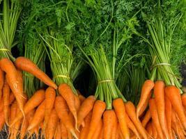 grupo de zanahorias foto