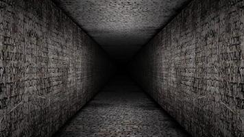 pasillo de bucle de paredes de epígrafe egipcio video