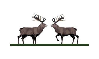 wild reindeer animals icon vector