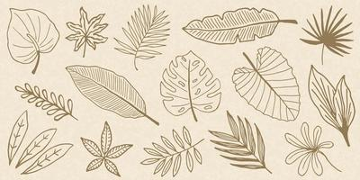 Tropical Leaves Doodle Collection vector