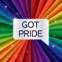tengo bandera de orgullo vector