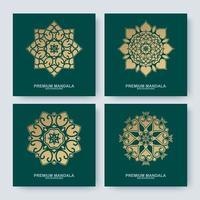 Set of golden mandala collections vector