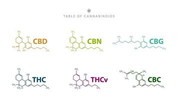 Table of cannabinoids. Chemical formulas of natural cannabinoids isolated on white background vector