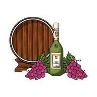 champagne bottle with grapes and barrel vector